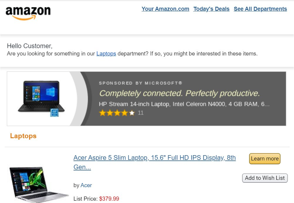 screenshot of the browsing history captured by Amazon of their customers.