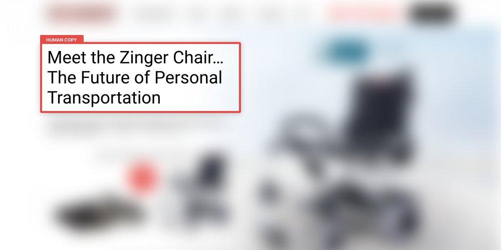 Zinger Human Copy Blurred