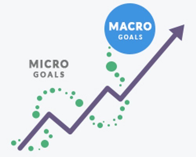 Micro and Macro Conversions | Choosing the Right CRO Metrics