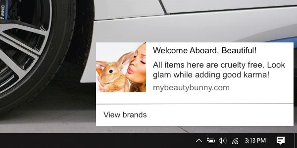 push-notifications-for-makeup-and-beauty-websites
