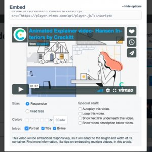 responsive embed option for videos on websites