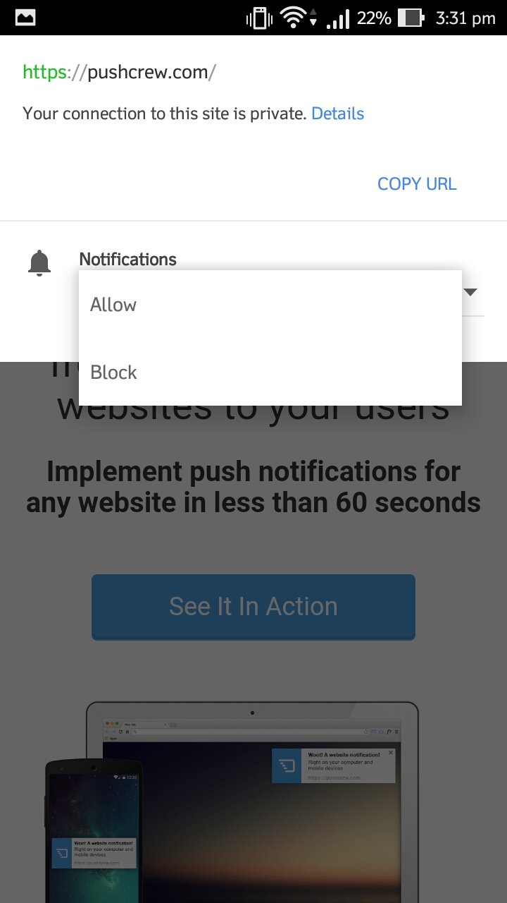 lock icon next to website on your chrome browser